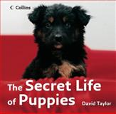 The Secret Life of Puppies, David A. Taylor, 0007263619
