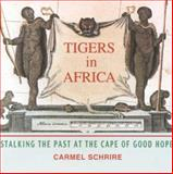 Tigers in Africa 9781919713632