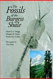 The Fossils of the Burgess Shale, Derek E. Briggs and Douglas H. Erwin, 1560983647