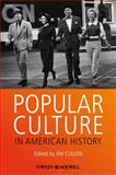 Popular Culture in American History 2nd Edition