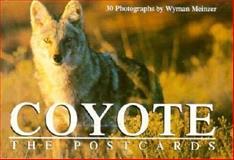 Coyote, , 0896723666