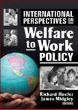 International Perspectives on Welfare to Work Policy, , 0789033674