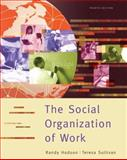 The Social Organization of Work, Sullivan, Teresa A. and Hodson, Randy, 0495003719