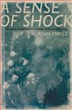 A Sense of Shock : The Impact of Impressionism on Modern British and Irish Writing, Parkes, Adam, 0195383818