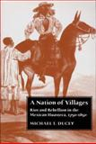 Nation of Villages, Ducey, Michael Thomas and Ducey, Michael T., 0816523835