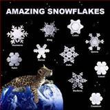 Amazing Snowflakes, Richard Matevosyan and Naira Matevosyan, 1490933859
