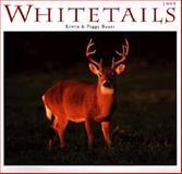 Whitetails Calendar 1999, Bauer, 0896583880