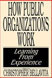How Public Organizations Work, Christopher Bellavita, 0275933911