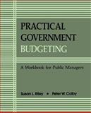 Practical Government Budgeting : A Workbook for Public Managers, Riley, Susan L. and Colby, Peter W., 0791403920