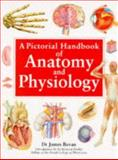 A Pictorial Handbook of Anatomy and Physiology, Bevan, James, 1857323920