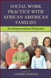Social Work Practice with African American Families, , 0789033925