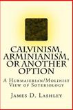 Calvinism, Arminianism, or Another Option, James Lashley, 1490323961