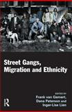 Street Gangs, Migration and Ethnicity, Inger-Lise Lien, 1843923963