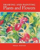 Drawing and Painting Plants and Flowers, Polly Raynes, 1581803966