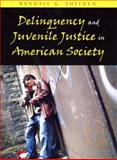 Delinquency and Juvenile Justice in American Society, Shelden, Randall G., 1577663993
