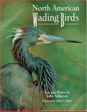 North American Wading Birds, Netherton, John, 089658402X