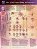 The Development of Blood Cells Anatomical Chart, Anatomical Chart Company Staff, 1587794055