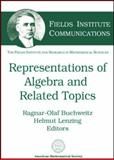 Representations of Algebras and Related Topics, INTERNATIONAL CONFERENCE ON REPRESENTATIONS OF ALGEBRAS 2002 TORONTO, INTERNATIONAL CONFERENCE ON REPRESENTATI, 0821834150