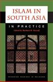Islam in South Asia in Practice, , 0691044201