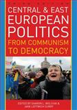 Central and East European Politics 3rd Edition