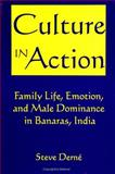 Culture in Action : Family Life, Emotion, and Male Dominance in Banaras, India, Derne, Steve, 0791424251