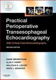 Practical Perioperative Transesophageal Echocardiography : Text with DVD-ROM, Sidebotham, David and Merry, Alan, 0702034274