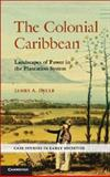 The Colonial Caribbean : Landscapes of Power in Jamaica's Plantation System, Delle, James A., 0521744334