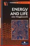 Energy and Life, Wrigglesworth, John M., 0748404333
