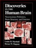 Discoveries in the Human Brain : Neuroscience Prehistory, Brain Structure, and Function, Marshall, Louise H. and Magoun, Horace W., 0896034356