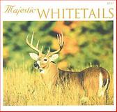 Whitetails Calendar 2000, Voyageur Press Staff, 0896584372