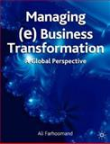 Managing (E) Business Transformation : A Global Perspective, Khan, Shamza and Gable, Guy, 1403944377