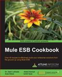 Mule ESB Cookbook, Azaz Desai and Zakir Laliwala, 1782164405