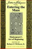 Entering the Maze 9780820424422