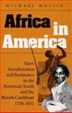 Africa in America : Slave Acculturation and Resistance in the American South and the British Caribbean, 1736-183, Mullin, Michael, 0252064461