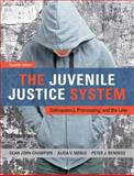 The Juvenile Justice System : Delinquency, Processing, and the Law, Champion, Dean J. and Merlo, Alida V., 0132764466