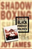 Representations of Black Feminist Politics, James, Joy, 0312294492