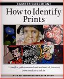 How to Identify Prints : A Complete Guide to Manual and Mechanical Processes from Woodcut to Ink-Jet, Gascoigne, Bamber, 050023454X