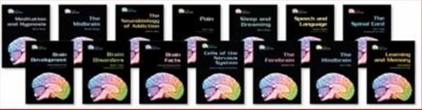 Gray Matter : Exploring the Brain Set, Eric H. Chudler, 0791094561