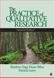 The Practice of Qualitative Research, Hesse-Biber, Sharlene Nagy and Leavy, Patricia, 1412974577
