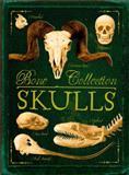 Bone Collection: Skulls, Rob Scott Colson and Camilla de la Bédoyère, 0545724570