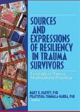 Sources and Expressions of Resiliency in Trauma Survivors : Ecological Theory, Multicultural Practice, Harvey, Mary R. and Tummala-Narra, Pratyusha, 0789034638