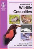 Wildlife Casualties, , 0905214633