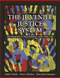 The Juvenile Justice System : Delinquency, Processing, and the Law, Merlo, Alida V. and Benekos, Peter J., 0133754642