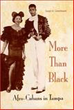 More Than Black : Afro-Cubans in Tampa, Greenbaum, Susan D., 0813024668
