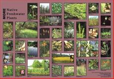 MORE Native Freshwater Plants Photo Mural, , 0970004664