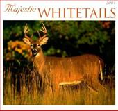 Whitetails Calendar 2001, Voyageur Press Staff, 0896584720