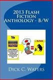 2013 Flash Fiction Anthology - B/W, Dick C. Waters and Aron Joice, 1493764764