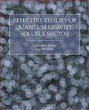 Effective Theory of Quantum Gravity, Subodha Mishra and Joy Christian, 1845494768