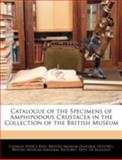 Catalogue of the Specimens of Amphipodous Crustacea in the Collection of the British Museum, Charles Spence Bate, 1144874777