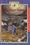 The Great Storm, Lisa Waller Rogers, 0896724786